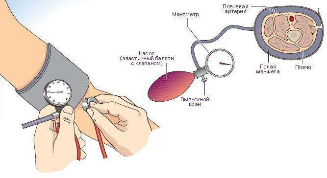 Артериальное давление тонометр механический