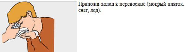 Народный совет от носового кровотечения