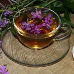 Иван чай при гипертонии и высоком артериальном давлении