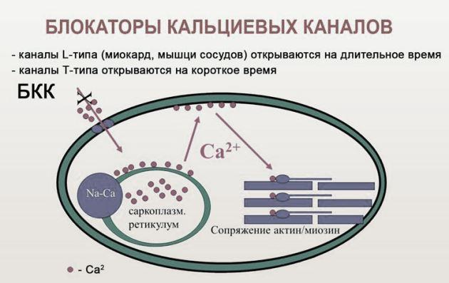 Классификация БКК