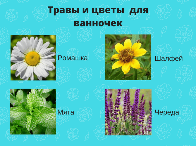 Травы и цветы для ванночек