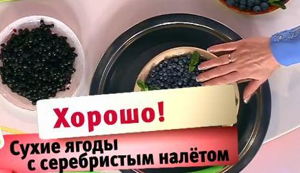 Ягоды лучше есть с серебристым налетом
