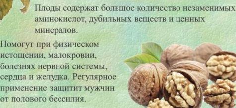 Польза грецких орешек