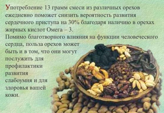 Польза орехов для сердца и сосудов